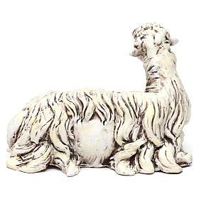 Pecorella rivolta a sinistra in terracotta per presepe Napoli stile 700 di 35 cm s4