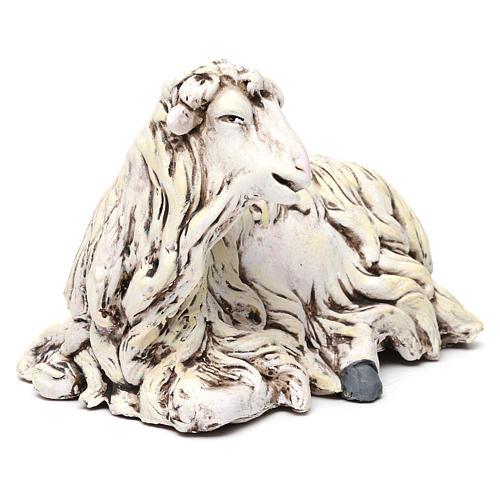 Pecorella rivolta a sinistra in terracotta per presepe Napoli stile 700 di 35 cm 3