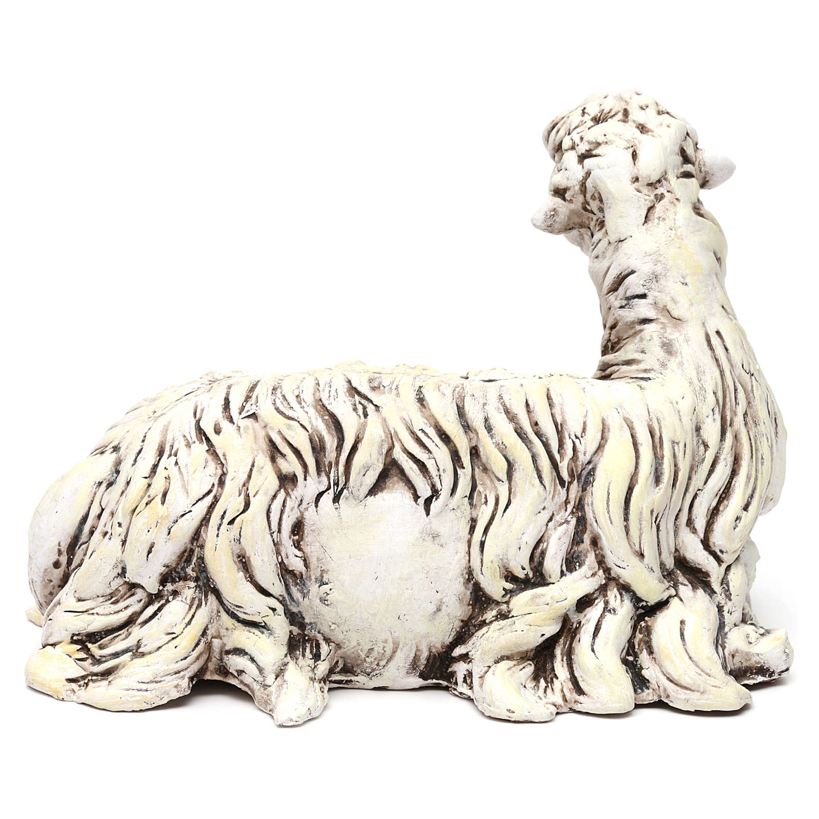 White Sheep looking left in terracotta for Neapolitan nativity style 700s of 35 cm 4