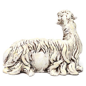 White Sheep looking left in terracotta for Neapolitan nativity style 700s of 35 cm s4