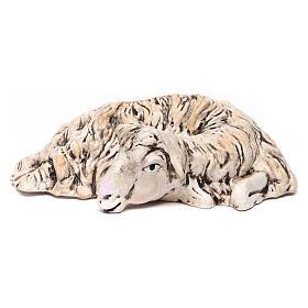 Pecorella sdraiata rivolta a destra per il presepe Napoli stile 700 di 35 cm s1