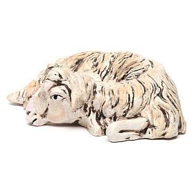 Pecorella sdraiata rivolta a destra per il presepe Napoli stile 700 di 35 cm s2