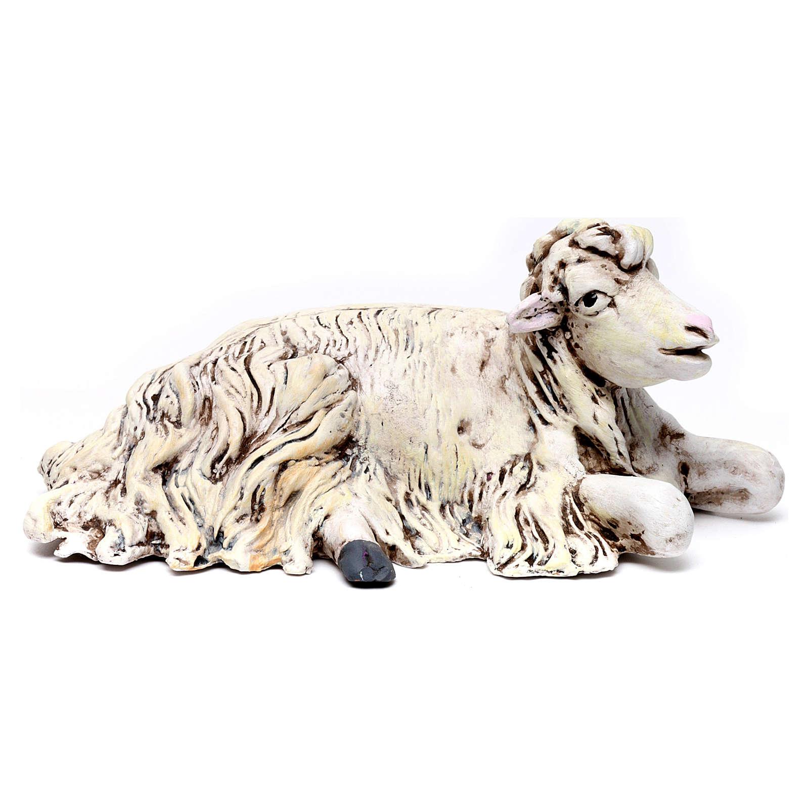 Oveja de rodillas con la cabeza a la derecha para belén Nápoles estilo 700 de 35 cm de altura media 4