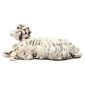 Pecora inginocchiata rivolta a destra per presepe Napoli stile 700 di 35 cm s4