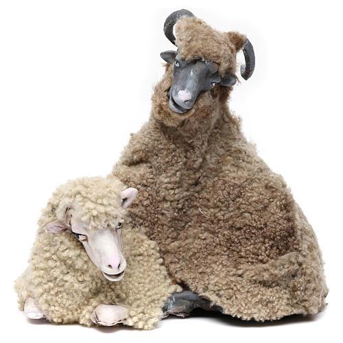 Caprone con pecorella per presepe napoletano stile '700 di 35 cm 1
