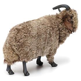 Caprone con lana per presepe napoletano stile '700 di 35 cm s3
