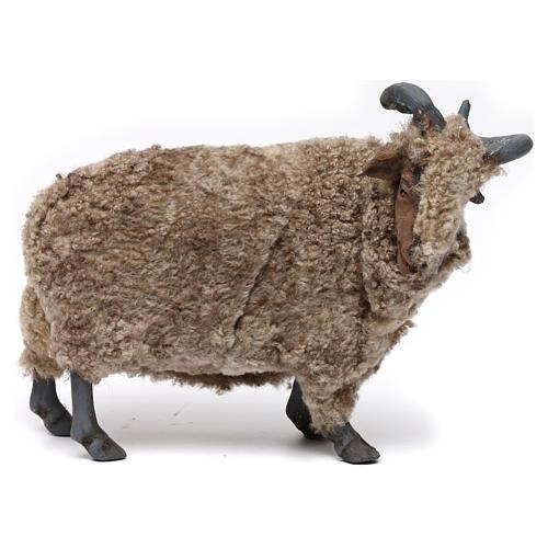 Caprone con lana per presepe napoletano stile '700 di 35 cm 1
