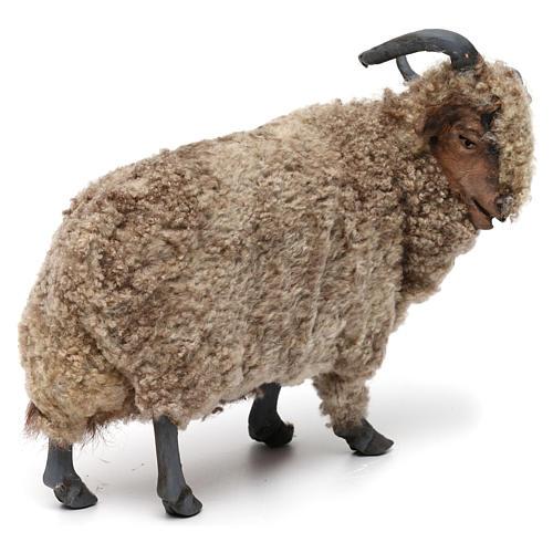 Caprone con lana per presepe napoletano stile '700 di 35 cm 3