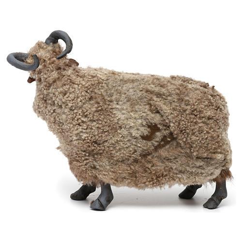 Caprone con lana per presepe napoletano stile '700 di 35 cm 4