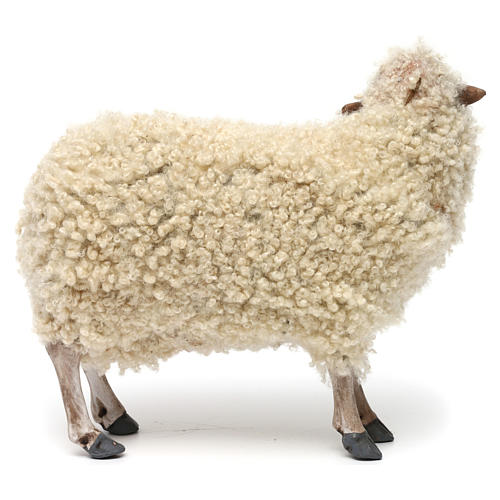 Young Sheep standing in wool for Neapolitan nativity style 700 of 35 cm 4