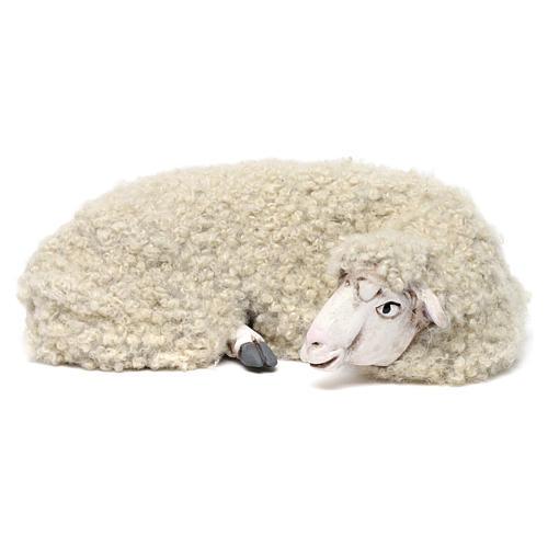 Pecora sdraiata con lana per presepe Napoli stile 700 di 35 cm 1