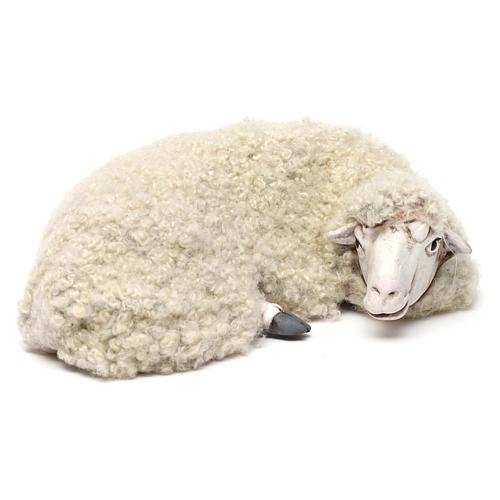 Pecora sdraiata con lana per presepe Napoli stile 700 di 35 cm 3