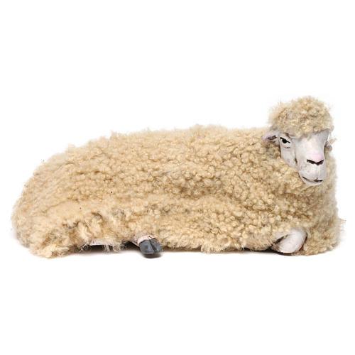 Pecora rivolta a destra con lana per presepe Napoli stile '700 di 35 cm 1