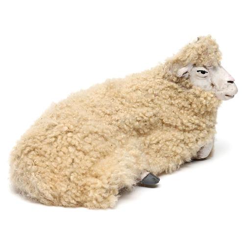 Pecora rivolta a destra con lana per presepe Napoli stile '700 di 35 cm 3