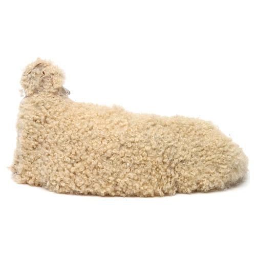Pecora rivolta a destra con lana per presepe Napoli stile '700 di 35 cm 4