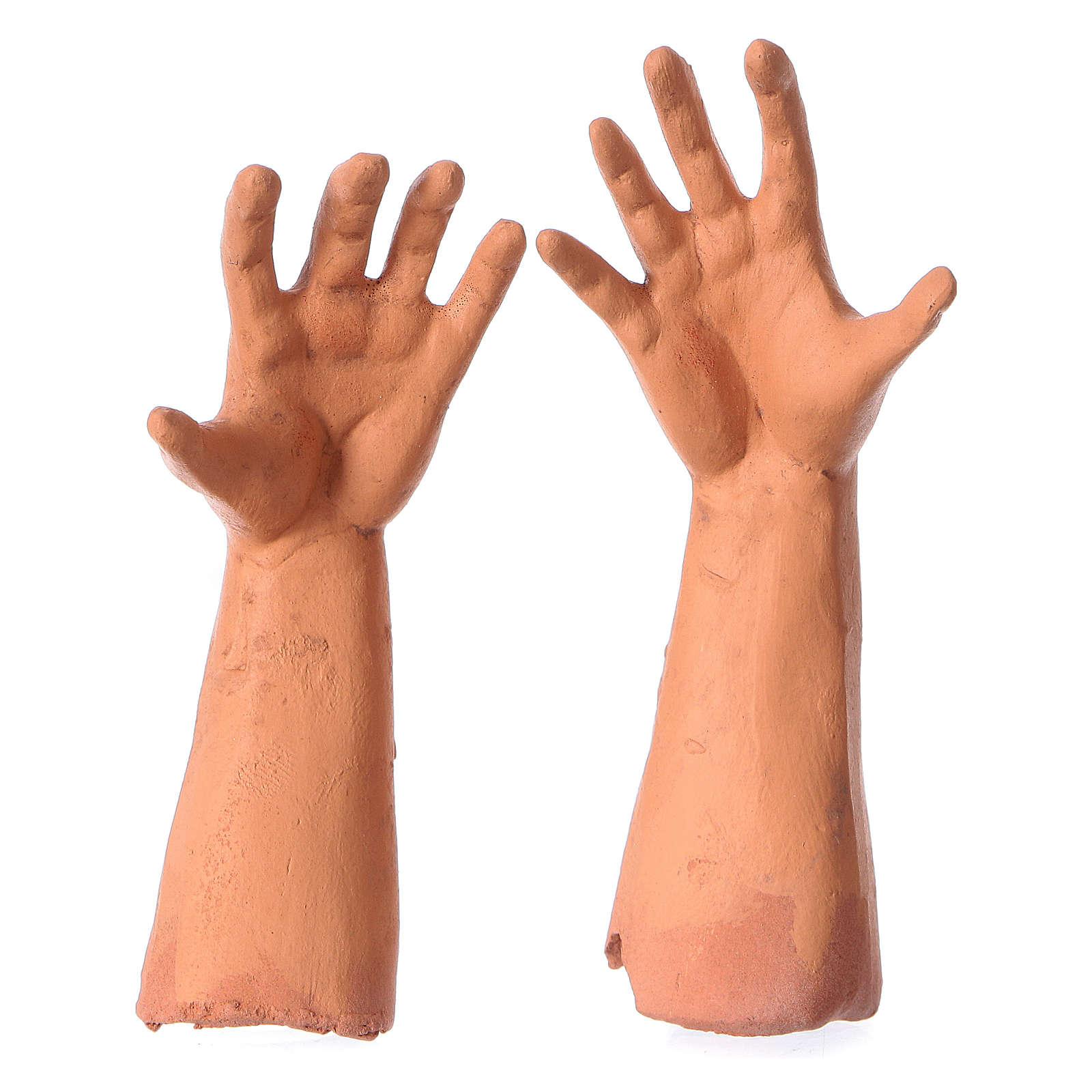 Testa occhi di vetro mani piedi Pastore 35 cm 4