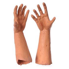 Teste mani e piedi per pastore calvo 35 cm s4