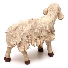 STOCK Mouton terre cuite 18 cm crèche napolitaine s3