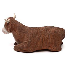 STOCK Bue in terracotta 18 cm presepe napoletano s3