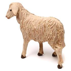 STOCK Mouton tête à gauche crèche napolitaine 14 cm s3