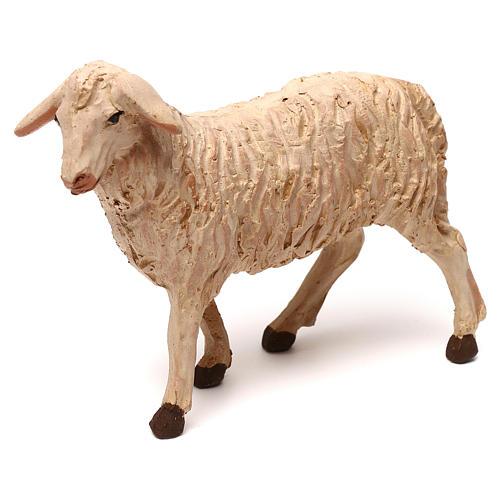 STOCK Mouton tête à gauche crèche napolitaine 14 cm 1