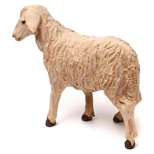 STOCK Mouton tête à gauche crèche napolitaine 14 cm 3