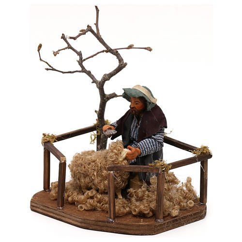 Tosatore di pecora lana presepe napoletano 10 cm 2