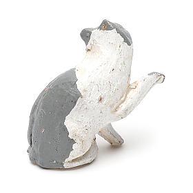 STOCK Gatto per presepe 7 cm terracotta s2