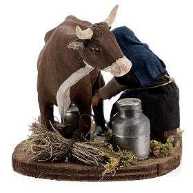 Pastor ordenhando vaca para presépio napolitano com figuras de altura média 10 cm s6