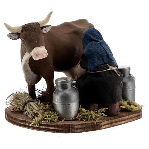 Pastor ordenhando vaca para presépio napolitano com figuras de altura média 10 cm 2