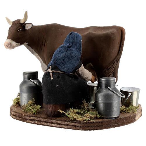 Pastor ordenhando vaca para presépio napolitano com figuras de altura média 10 cm 3