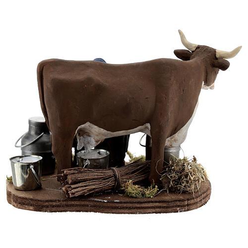 Pastor ordenhando vaca para presépio napolitano com figuras de altura média 10 cm 5