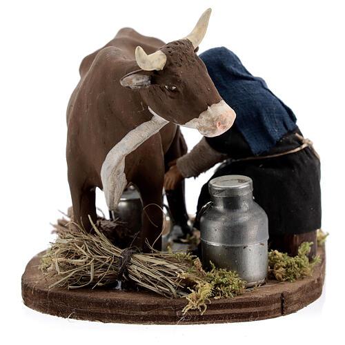 Pastor ordenhando vaca para presépio napolitano com figuras de altura média 10 cm 6