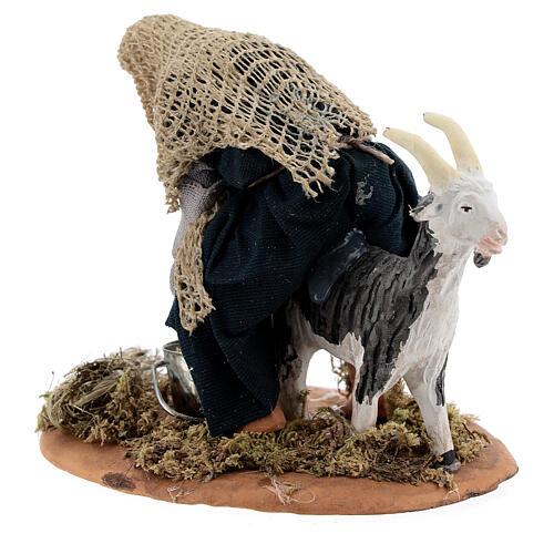 Mungitore capra presepe napoletano 13 cm 7