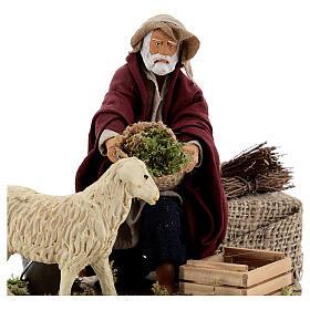 Animated nativity shepherd and sheep, 14 cm Naples s2