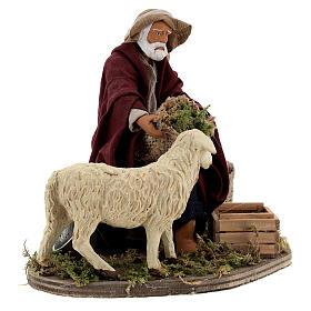 Animated nativity shepherd and sheep, 14 cm Naples s4