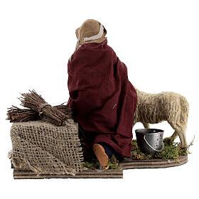 Animated nativity shepherd and sheep, 14 cm Naples s5