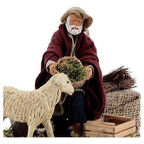 Animated nativity shepherd and sheep, 14 cm Naples 2