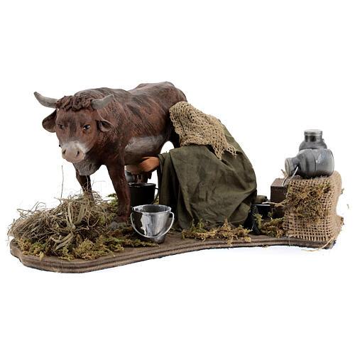 Man milking cow animated statue, 14 cm Naples 1