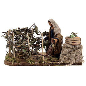 Woman collecting grapes, animated Naples nativity 12 cm s1