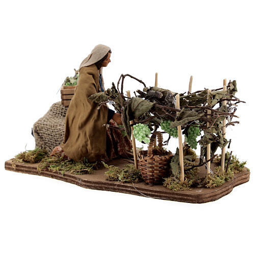 Woman collecting grapes, animated Naples nativity 12 cm 4