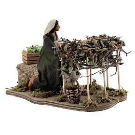 Woman picking grapes, animated Neapolitan nativity 14 cm s4