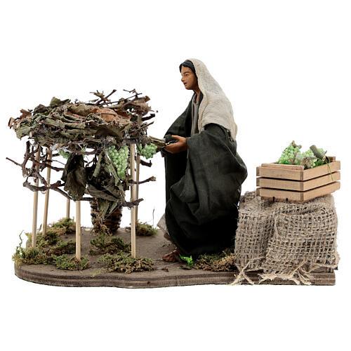 Woman picking grapes, animated Neapolitan nativity 14 cm 1