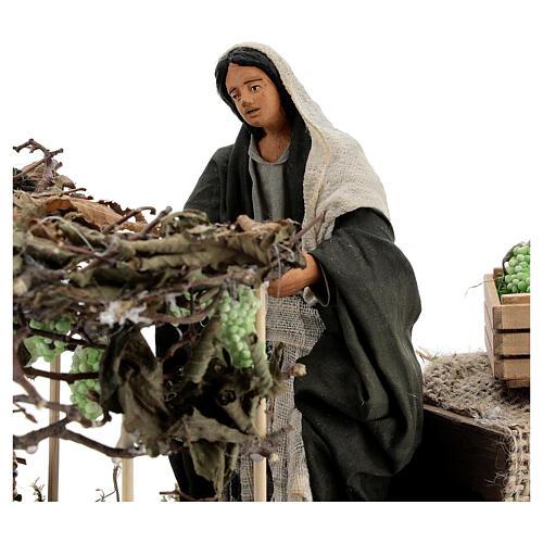 Woman picking grapes, animated Neapolitan nativity 14 cm 2