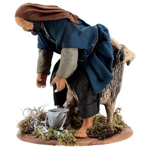 Pastor ordenhando cabra para presépio napolitano com figuras de altura média 15 cm 2