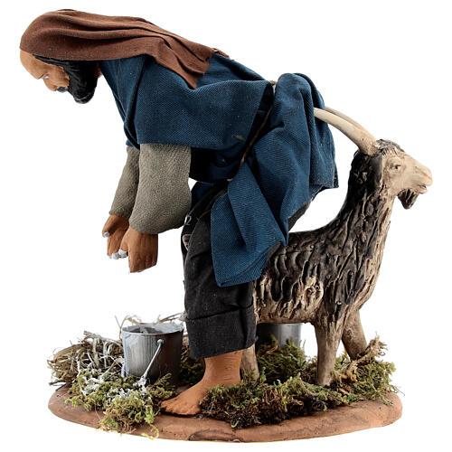 Pastor ordenhando cabra para presépio napolitano com figuras de altura média 15 cm 3