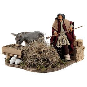 Animated nativity shepherd with straw, 14 cm Neapolitan nativity s2