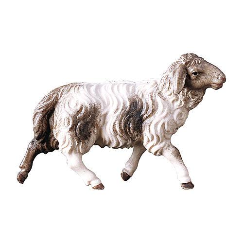 Pecora che corre macchiata presepe Original Pastore legno dipinto in Val Gardena 10 cm 1