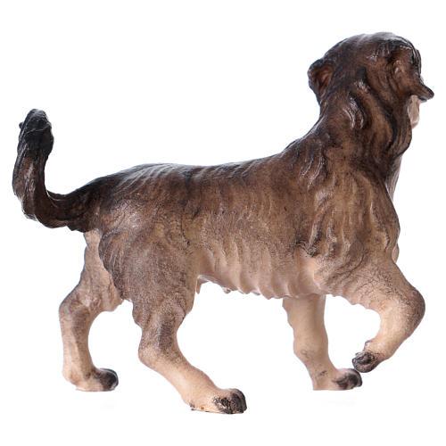 Cane da pascolo per presepe Original Pastore legno dipinto in Valgardena 12 cm 2