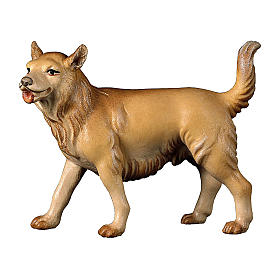 Cane da pascolo presepe Original Cometa legno dipinto in Val Gardena 10 cm s1